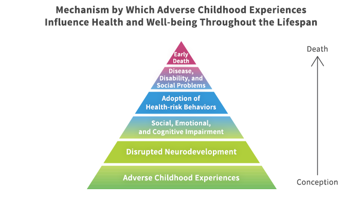 mechanism-by-which-adverse-childhood-experiences-influence-health-and-well-being-throughout-the-lifespan-ace
